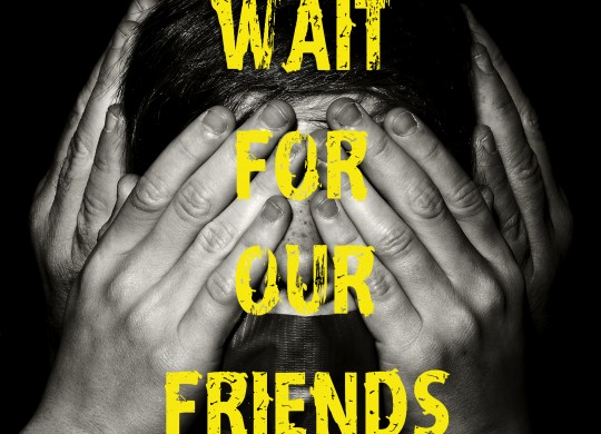Wait for our Friends